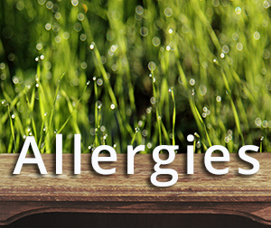 Allergies Breaux Bridge Chiropractic