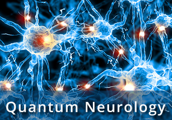 quantum neurology and chiropractic